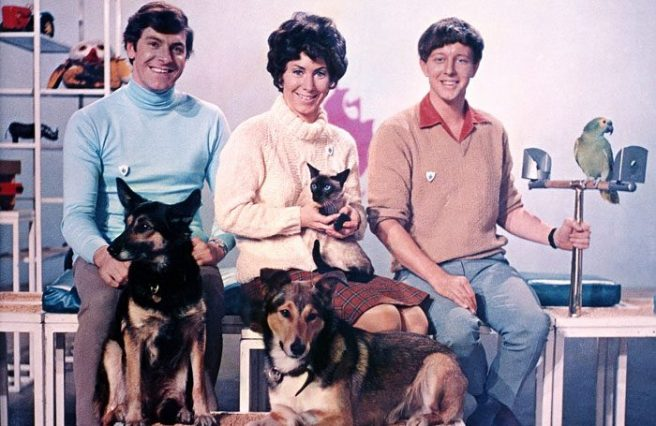 CLEANED-Peter-Purves-Valerie-Singleton-John-Noakes-Jason-the-cat-Petra-and-Patch-the-dogs-and-Barney-the-parrot-Blue-Peter-1969-Copyright-BBC-700x455